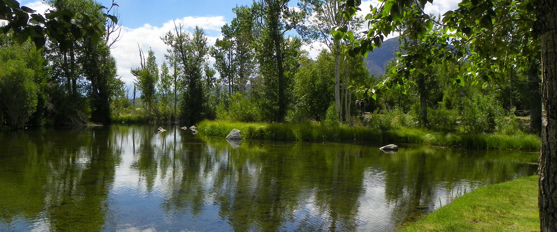 Northern california campgrounds with hookups